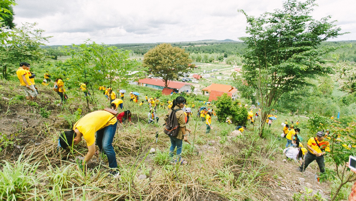 DHL employees in Thailand embark on 'GoGreen' reforestation project to give back to local community as part of Global Volunteer Day 2016